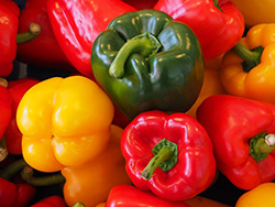 sweet-peppers-499076_960_72