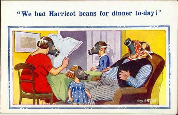 Harricott beans
