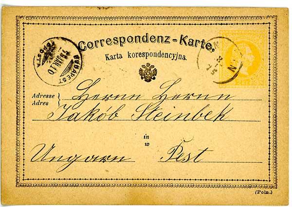 Sniatyn 1875 Karta